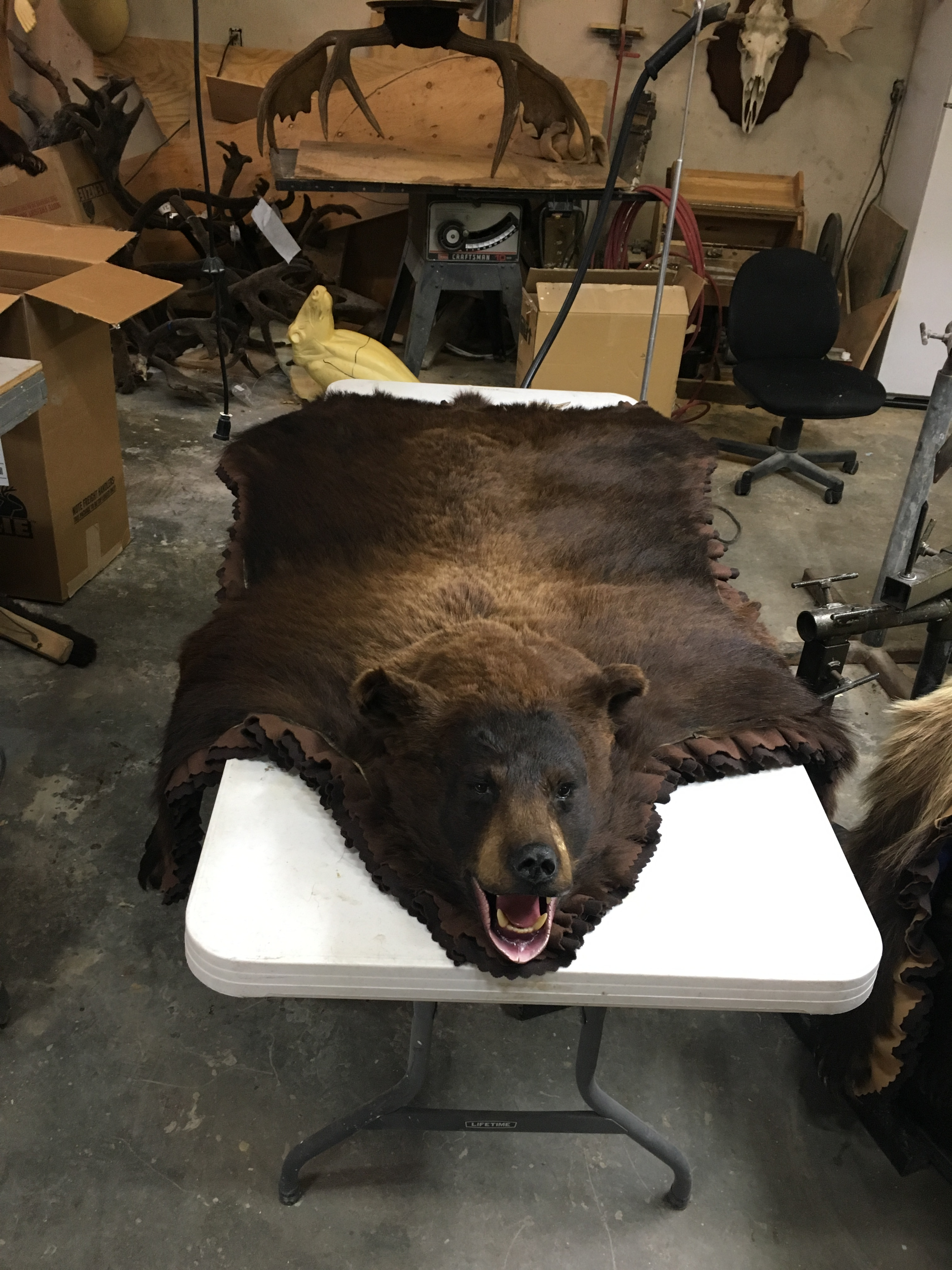 tora fur rug area x grizzly shape zoom faux ca il listing bear realistic brown fullxfull